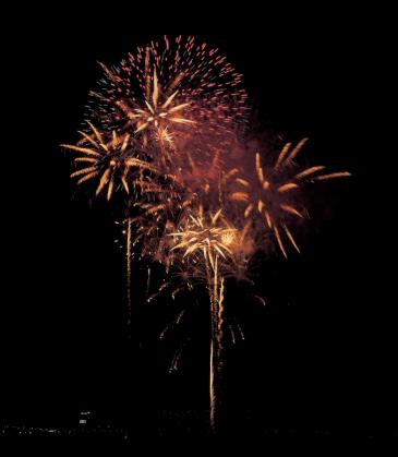 Pets + Fireworks - Keep Them Safe